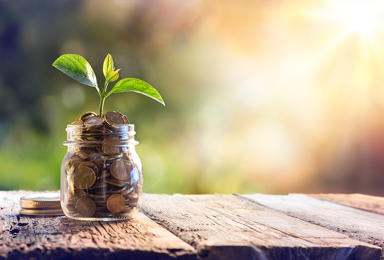 Plant Growing In Savings Coins –