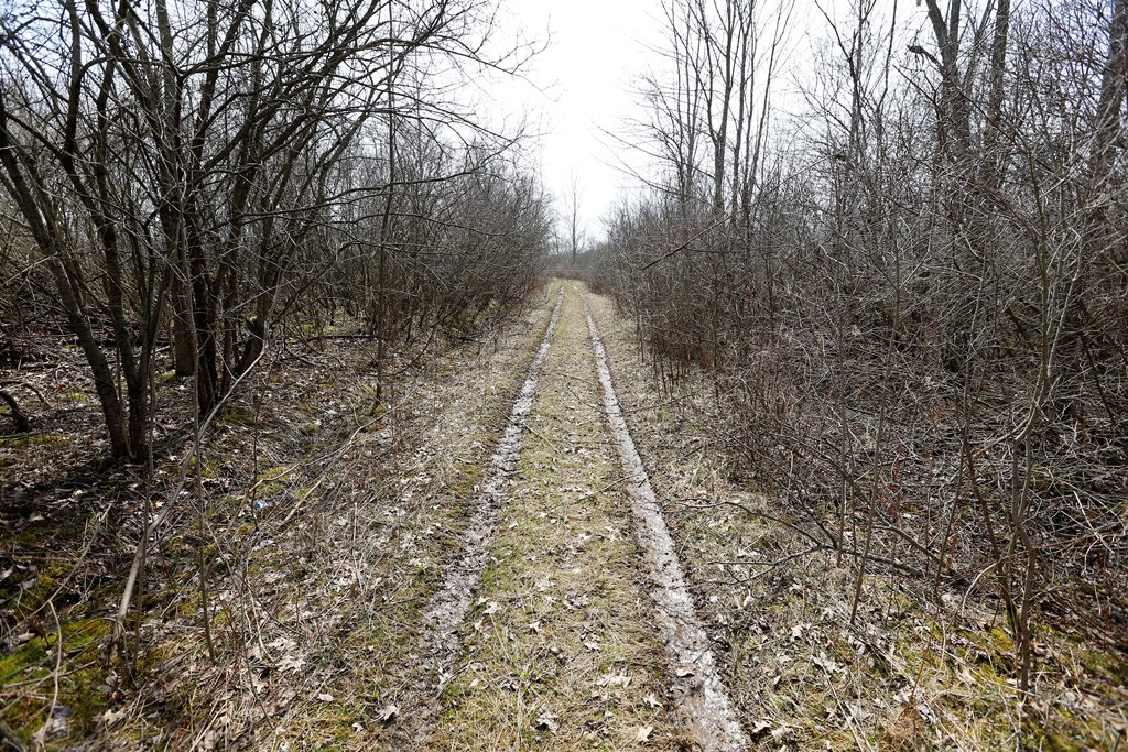A plan for a trail system through a town-owned woods on Grand Island has gotten the thumbs up twice from the Niagara River Greenway Commission.  A portion of the land is near the Grand Island schools' athletic fields. (Mark Mulville/Buffalo News)