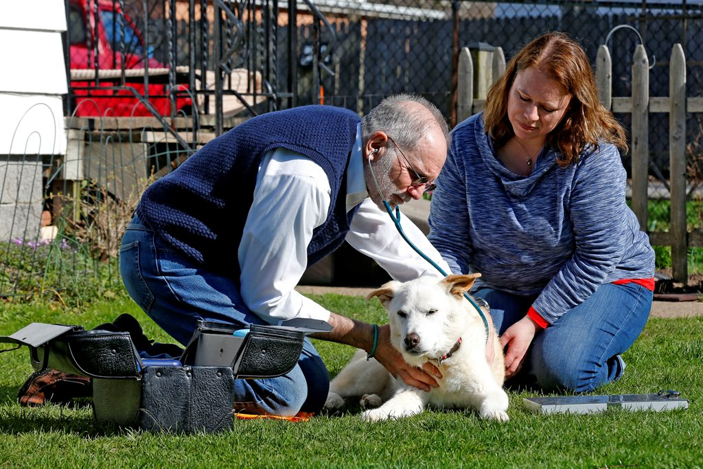 Steven Schultz, DVM, of Lap of Love project, and owner Robyn Eckhardt with her dog Gemma during a check-up on the lawn of Eckhardt's  Lockport home on Monday, April 17, 2017.  (Robert Kirkham/Buffalo News)