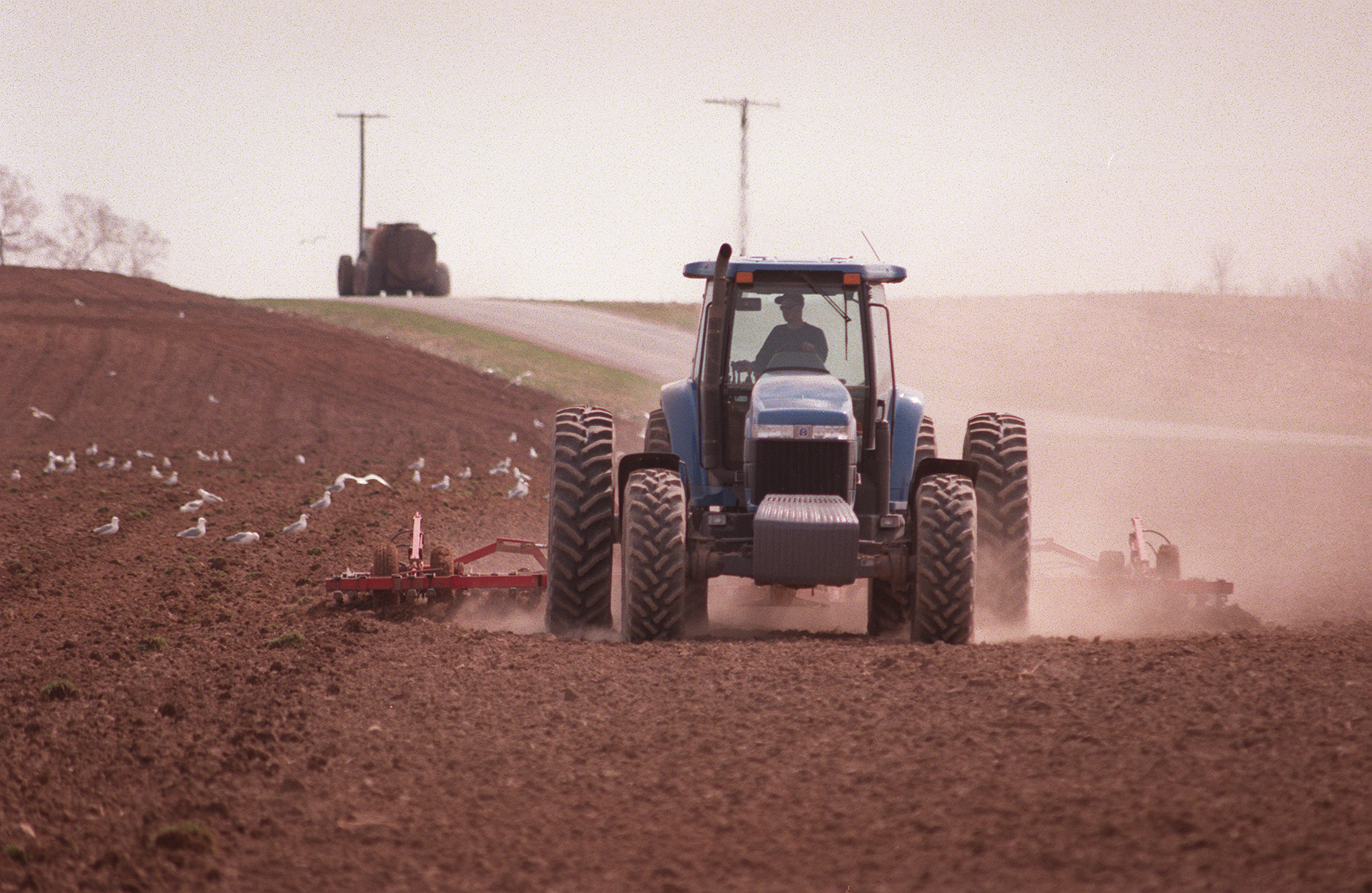 A worker at Torrey Farms cultivates the soil in preparation for planting peas in Elba. (News file photo)