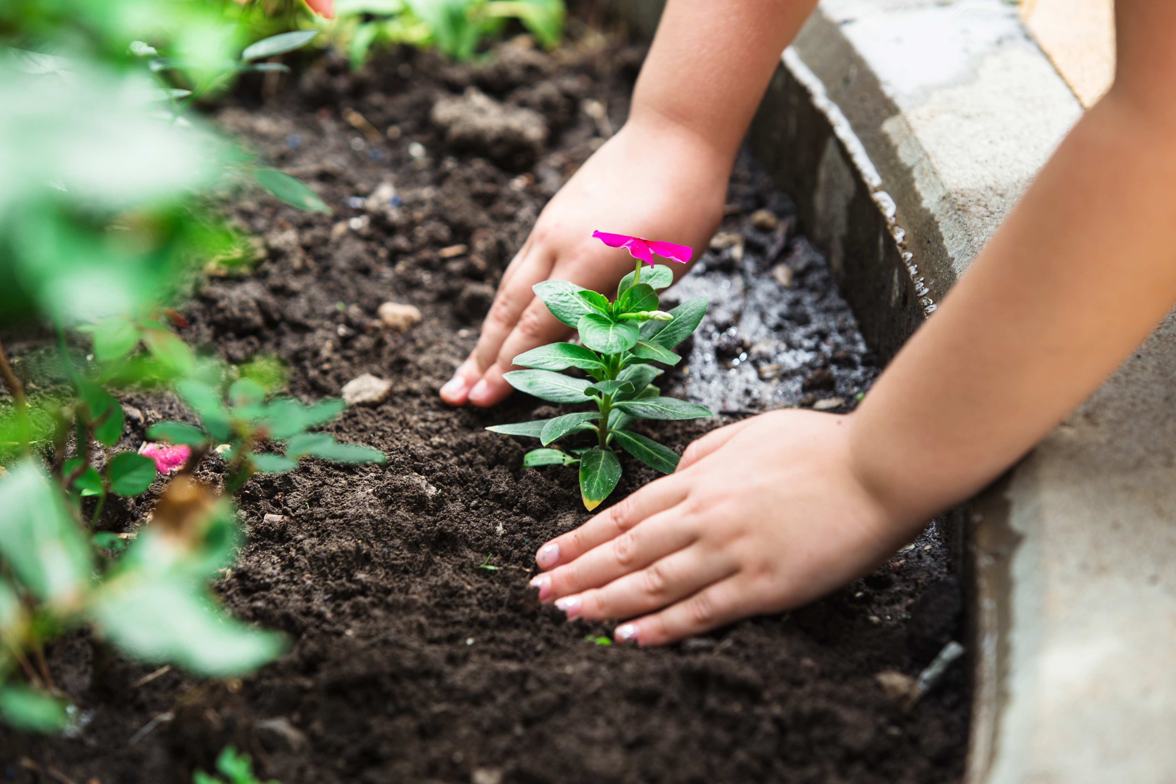 Spending time with children in the garden is an experience they will always remember. Teach and encourage them to dig and plant – and care for other living things.