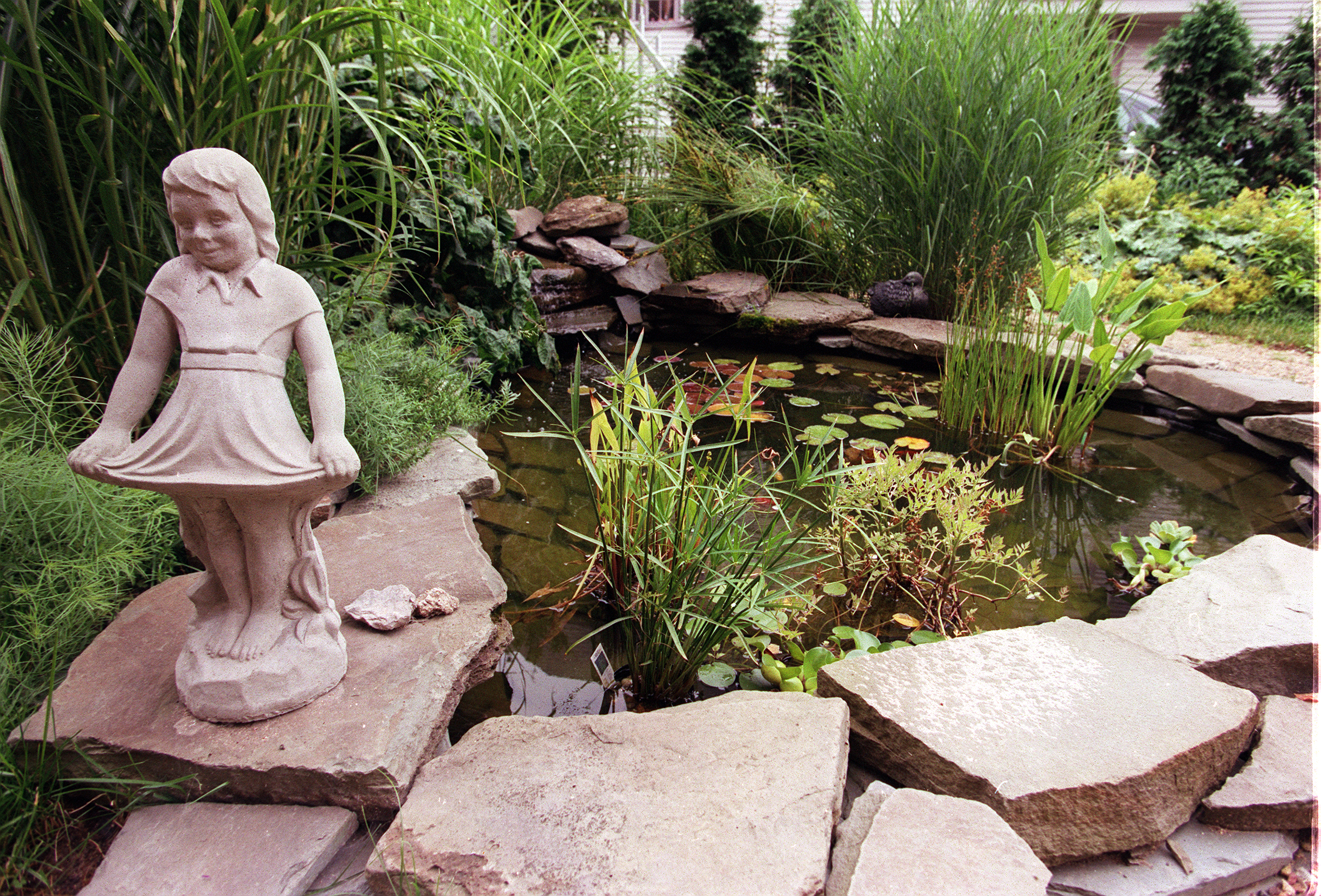 Members of the Garden Club of the Tonawandas will  learn about water gardens and ponds at their April 20 meeting. (News file photo)