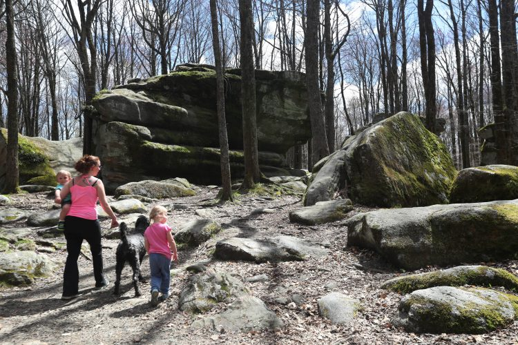 Why the Allegany Nature Pilgrimage is a breath of fresh air