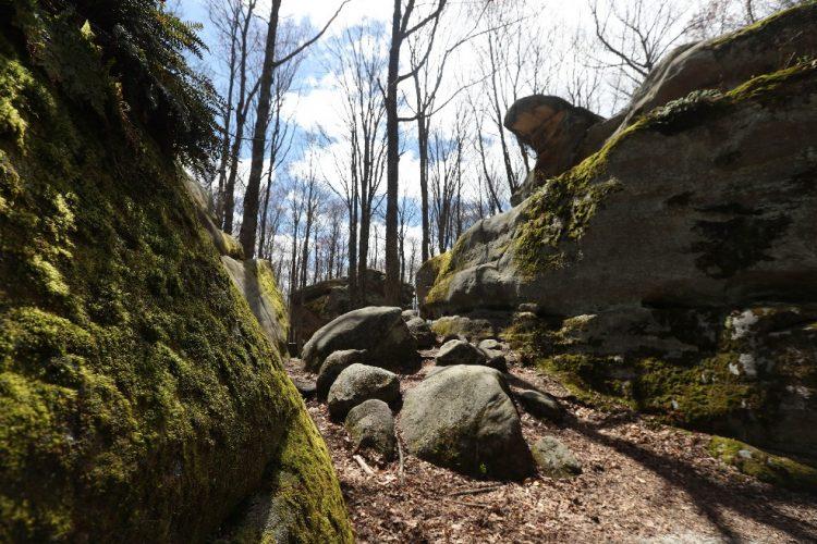 Thunder Rocks at Allegany State Park. (Sharon Cantillon/Buffalo News)