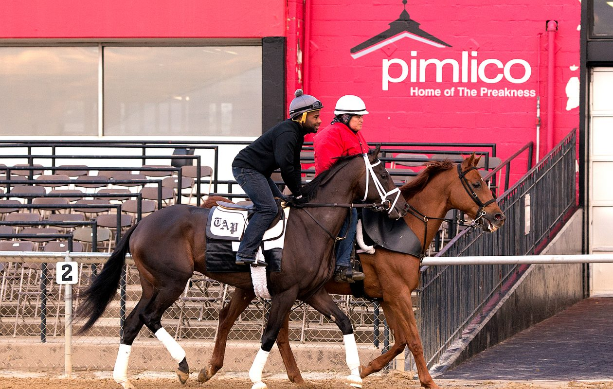 Always Dreaming (outside) looks for second jewel in Saturday's Preakness. Photo Credit: Maryland Jockey Club