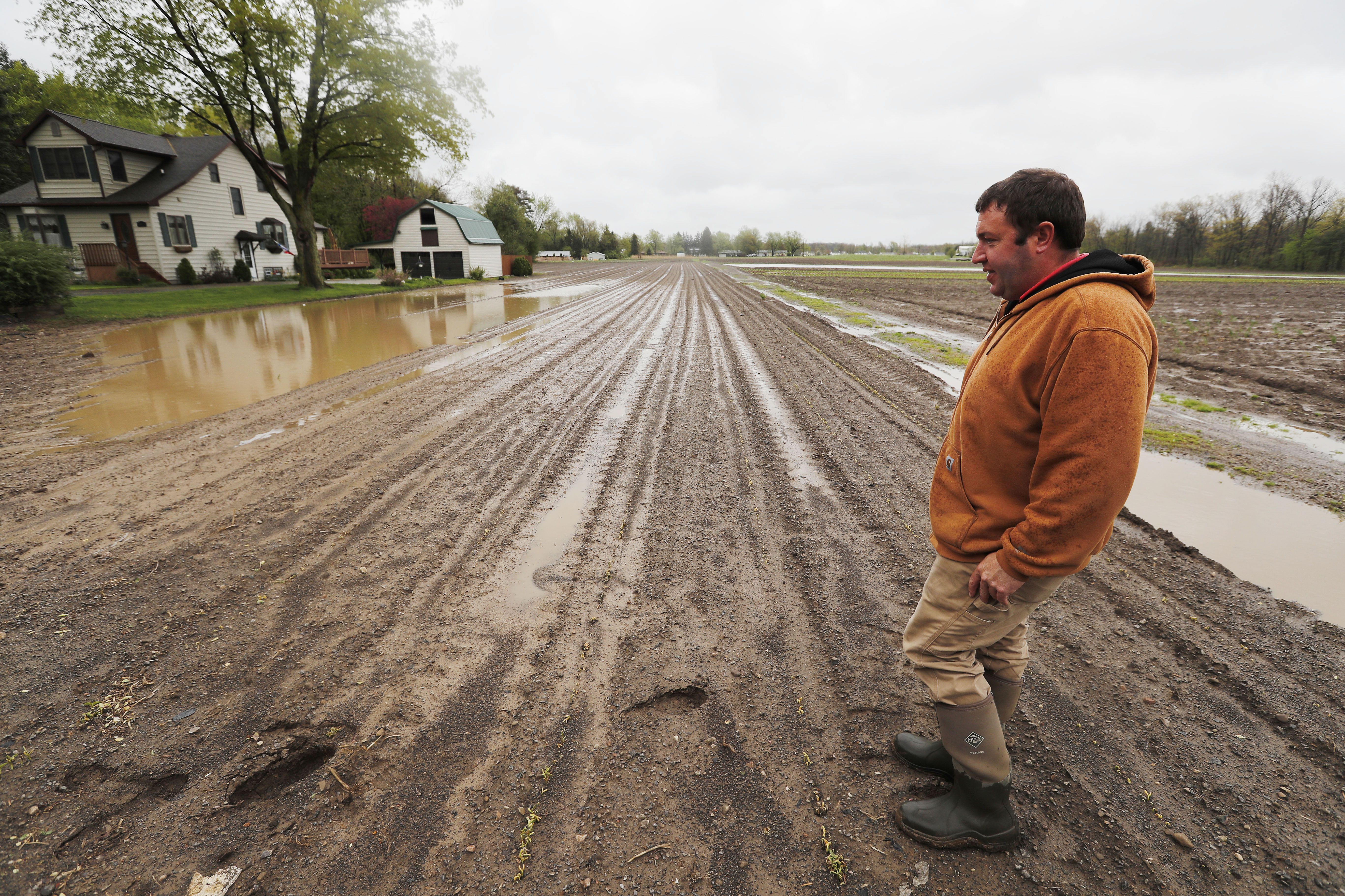 Brad Draudt from Draudt's Farm in Hamburg stands near a water saturated field where beans were growing Tuesday, May 2, 2017.         (Mark Mulville/Buffalo News)
