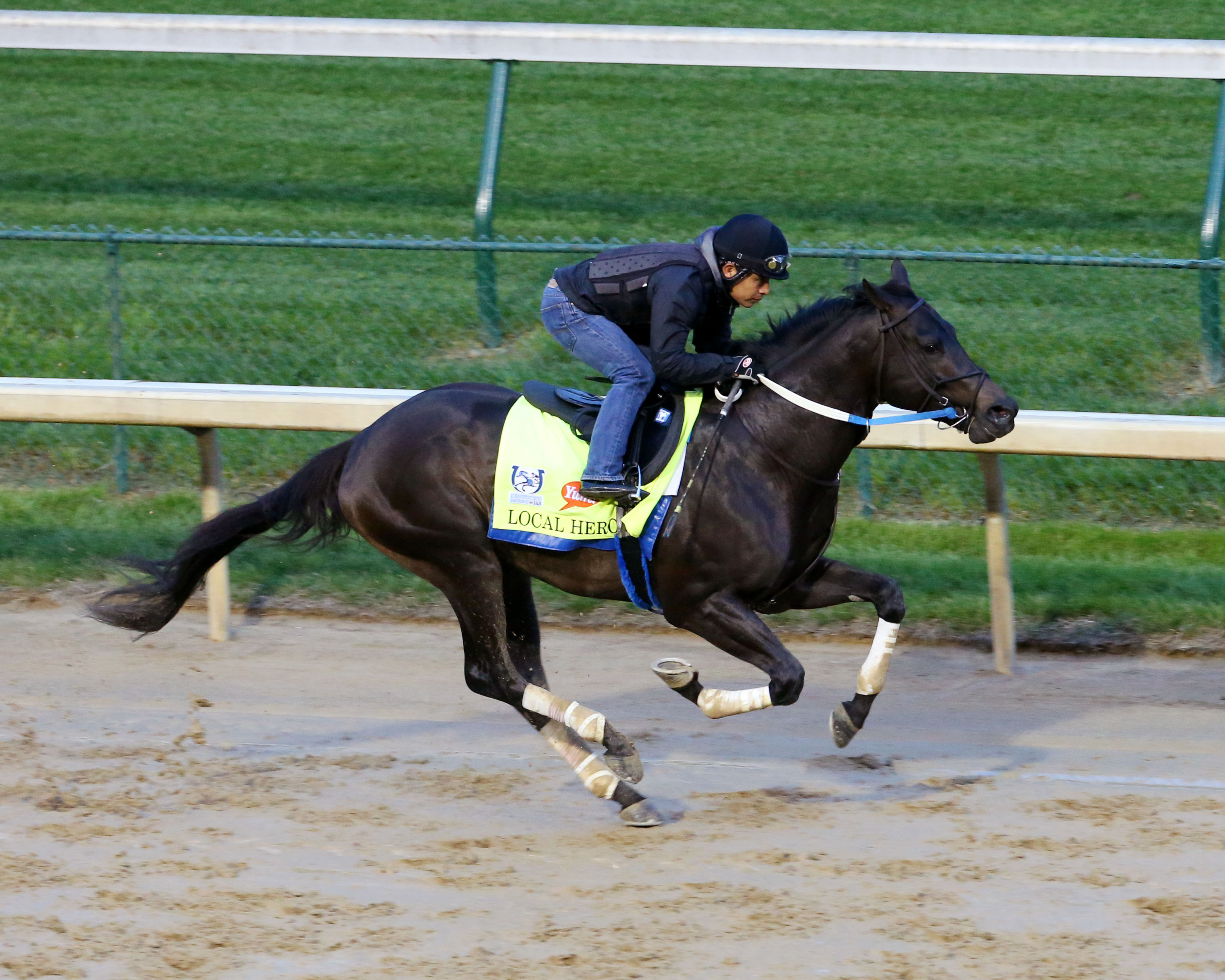 Local Hero will run in the Pat Day Mile on the Derby undercard. Photo Credit: Coady Photography/Churchill Downs