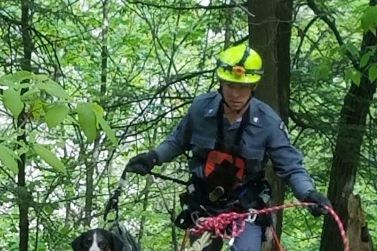 Rappelling ranger rescues lost dog from Letchworth gorge