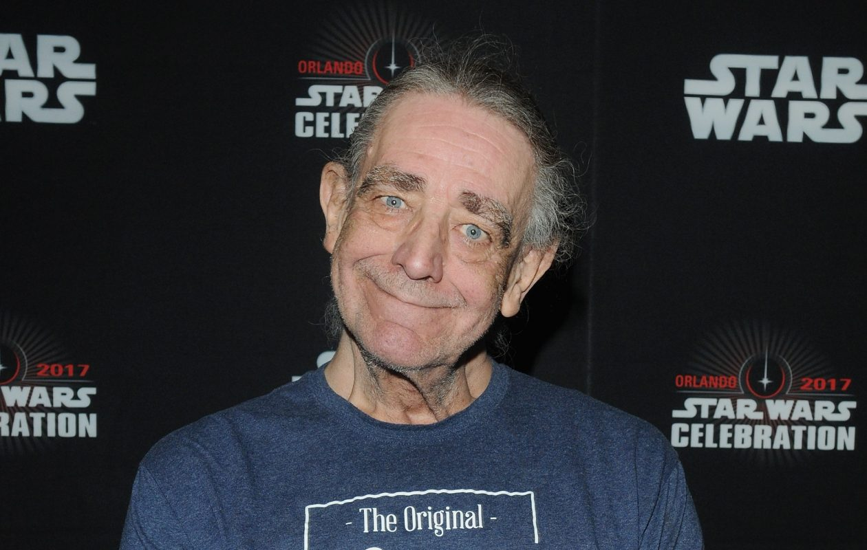 Peter Mayhew will visit Niagara Falls Comic Con in Niagara Falls, Ont. (Getty Images)