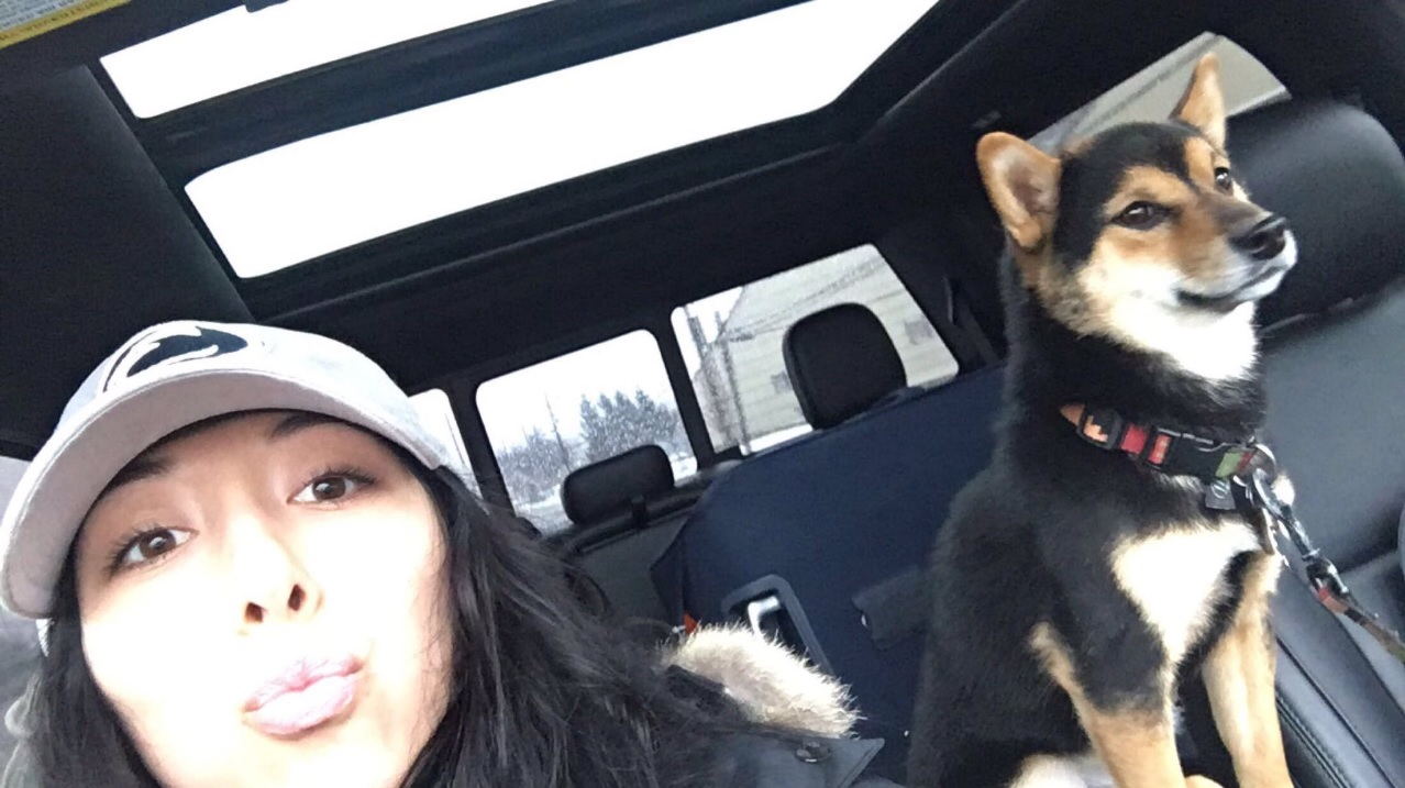 Kelly Pegula and her dog, Yoshi, a Shiba Inu who went missing early Tuesday. (Photo courtesy Kelly Pegula)
