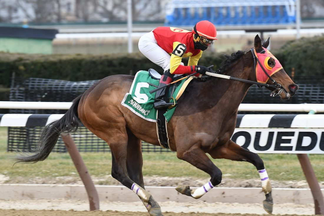 Long-shot Actress wins Black-Eyed Susan to break maiden
