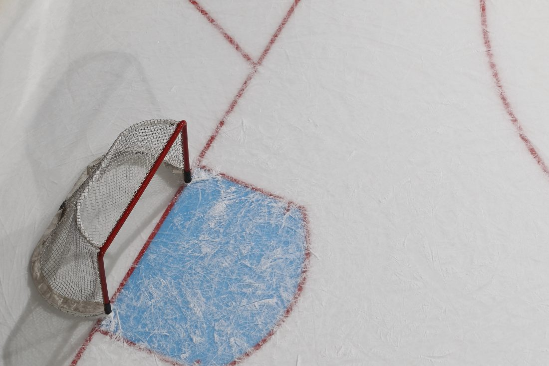 There are two separate proposals to build ice rink complexes in the Town of Hamburg.