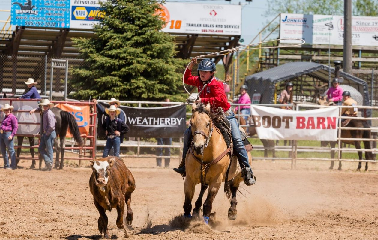 Whether she is roping a cow or maneuvering around obstacles on a horse, Michaila Raby, 13, of Lewiston, demonstrates skill and determination.  (Photo provided by Suzanne Raby)
