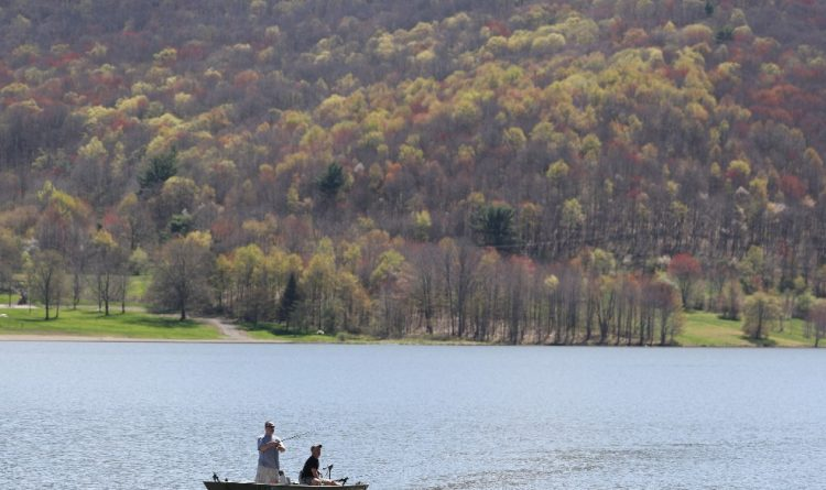 Fifteen new cottages coming to Allegany State Park