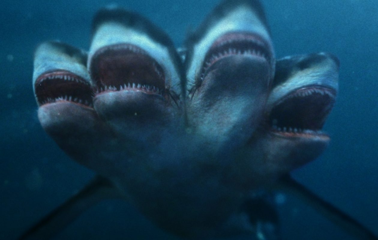 "The premiere of ""5 Headed Shark Attack"" kicks off ""Sharknado Week"" July 30 on Syfy. Now where is that fifth head? (Photo courtesy The Asylum.)"