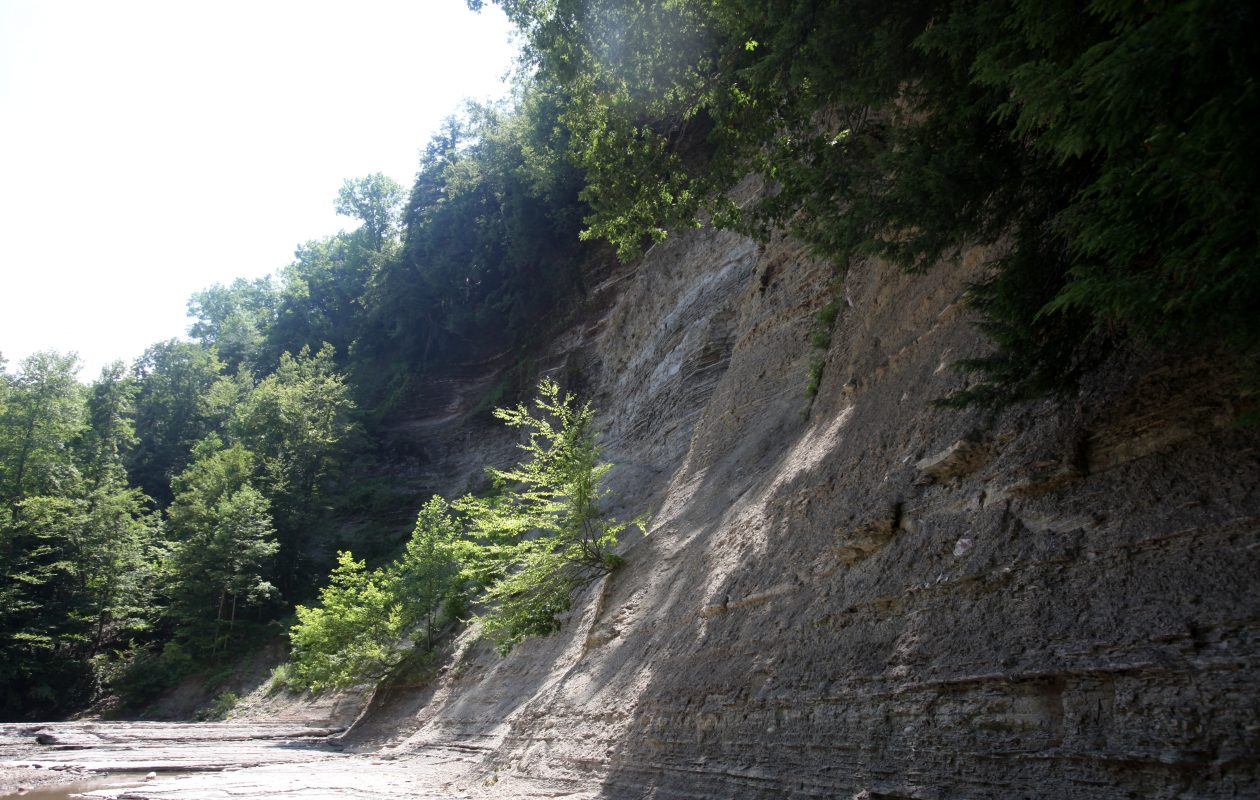 The gorge at Zoar Valley in Gowanda. (Buffalo News file photo)