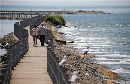100 Plus Things: Take a walk on the Bird Island Pier