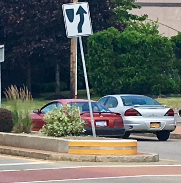 What one of the Main Street medians near Hertel Avenue looks like now.