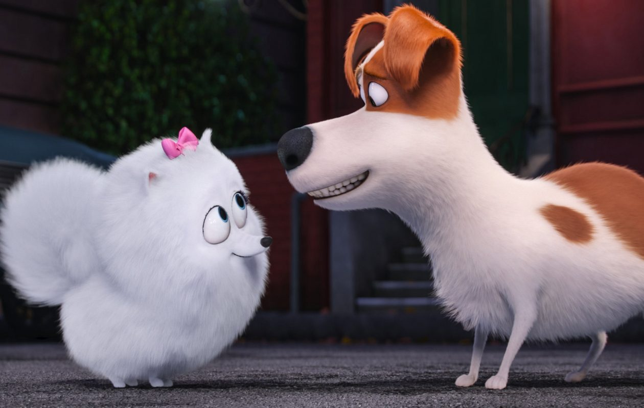 "Grab the kids for a free screening of ""The Secret Lives of Pets."" (Photo by Universal Pictures and Illumination Entertainment)"