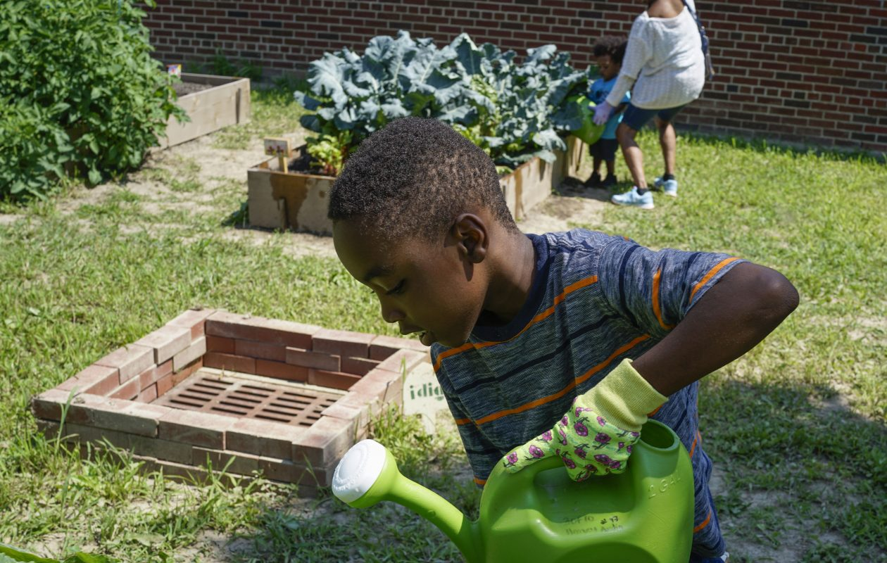 Elisha McClinton, 8, helps water the vegetable plants in the community garden at the Harvey Austin School in Buffalo on July 31 as part of the community schools initiative.  (Derek Gee/Buffalo News)