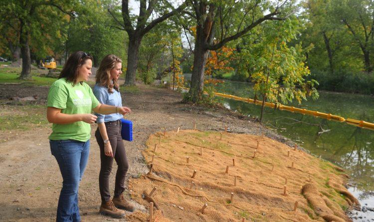 'Living shoreline' aims to return wildlife to Ellicott Creek Park