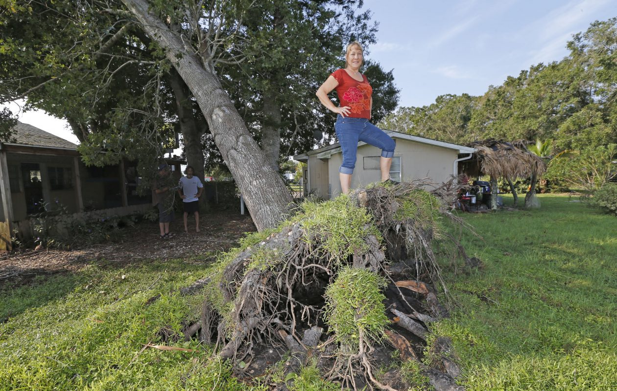 Former Buffalo area resident Salliann Burgio,  who now lives in Palmetto, Fla., describes on  Thursday, Sept. 14, 2017 what happened the night Hurricane Irma blew past. She was awakened by a neighbor warning her that a large sycamore tree had been uprooted by the hurricane and was dangerously close to her house. (Robert Kirkham/Buffalo News)