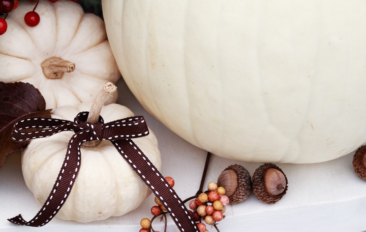 A simple ribbon dresses up a white pumpkin.