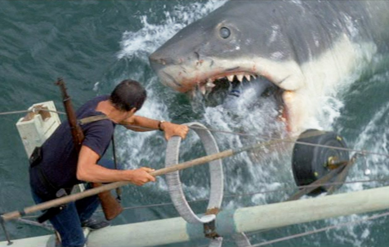 'Jaws' is being shown as part of the Regal Horror Festival.