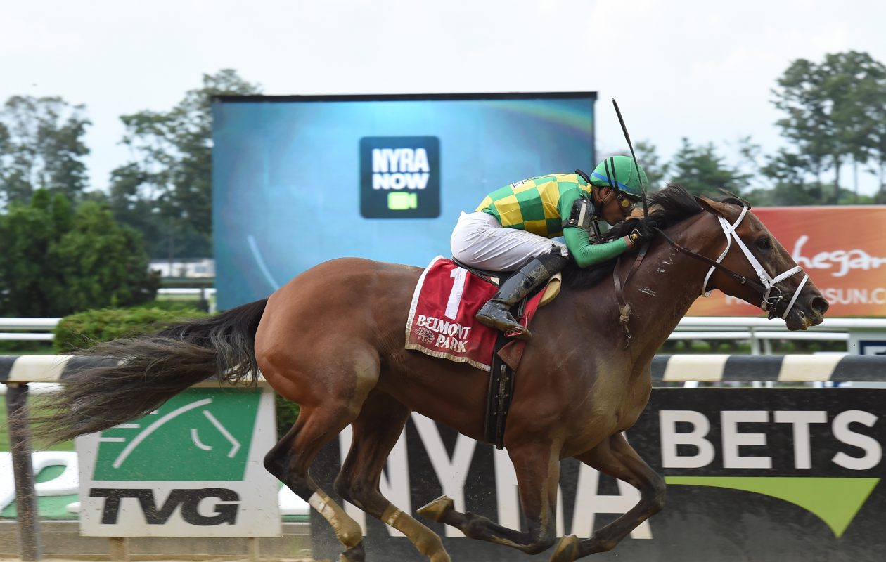 Keen Ice, the Suburban winner, is the morning line favorite in Saturday's Jockey Club Gold Cup. Photo Credit: Susie Raisher/NYRA