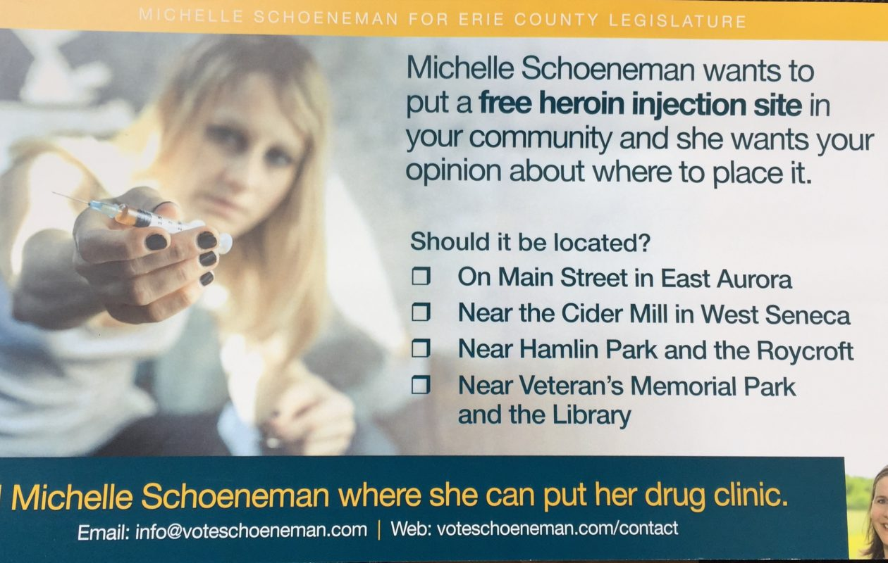 Michelle Schoeneman denies the positions attributed to her in this flier sent to voters by unidentified opponents.