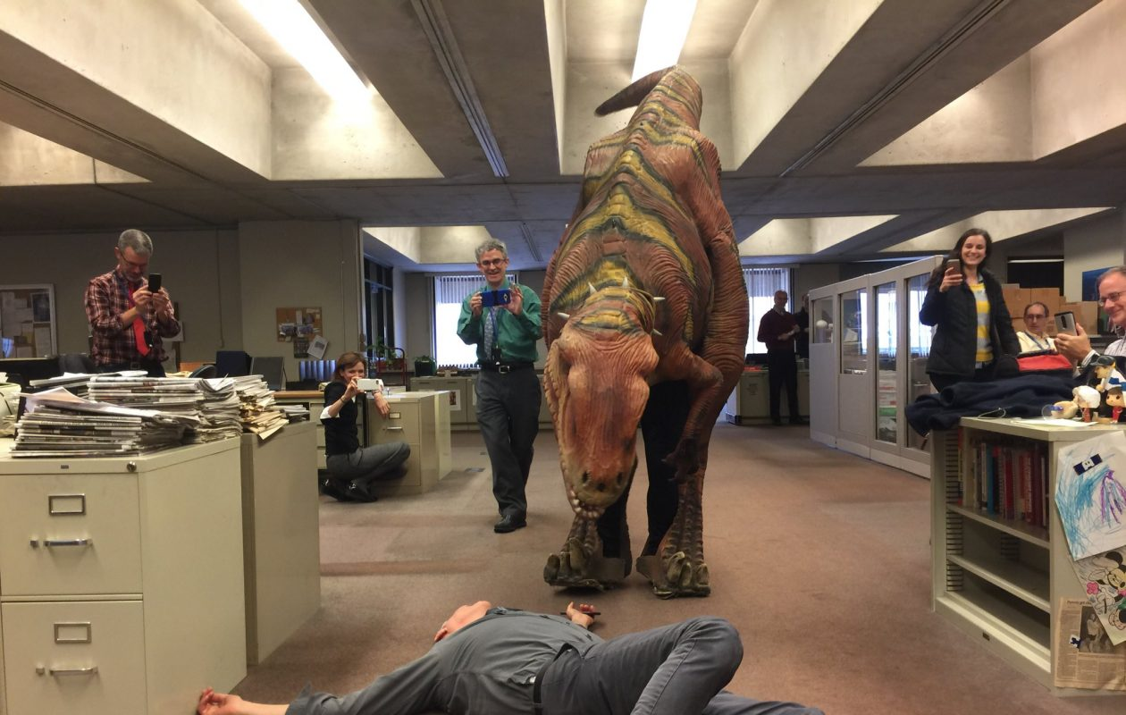 News staff reporter Mark Sommer looks like a tasty snack to Vinnie the Velociraptor who will be making at an appearance this weekend at the Buffalo Museum of Science's Dino Daze. (Maki Becker/Buffalo News)
