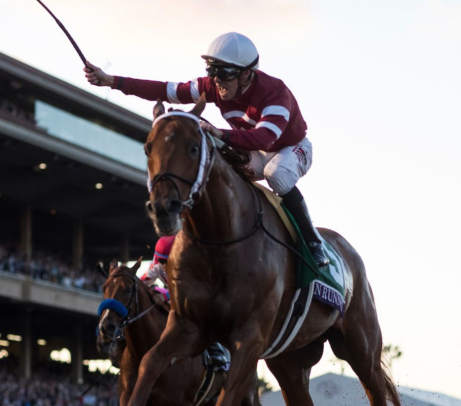 DEL MAR, CA: Florent Geroux, aboard Gun Runner #5, celebrates as he crosses the finish line to win the Breeders' Cup Classic on November 4, 2017 (Photo by Alex Evers/Eclipse Sportswire/Breeders Cup)