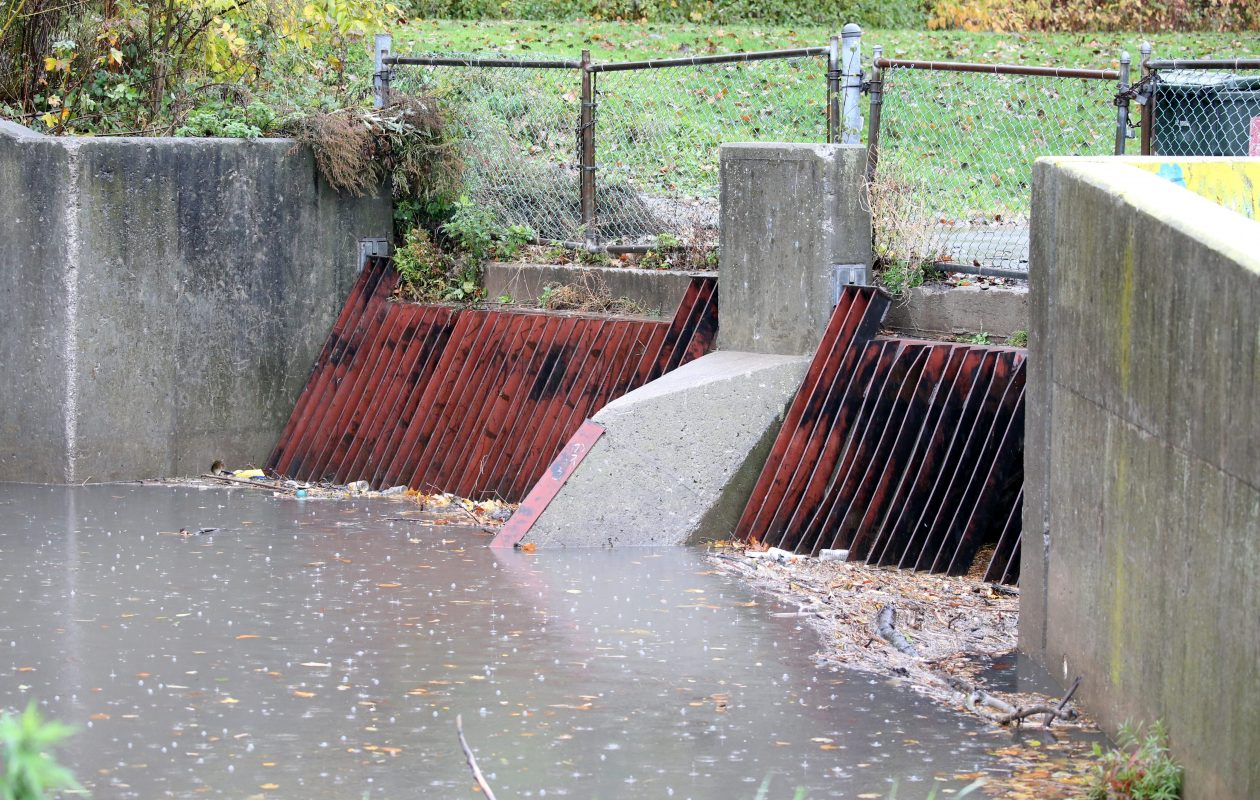 Strainer grates on Scajaquada Creek where it flows into Hoyt Lake in Delaware Park are entry points for sewage. (Buffalo News file photo)