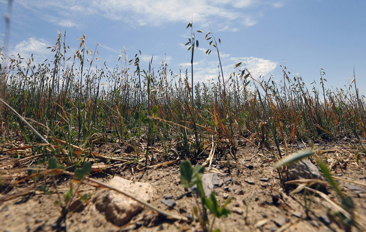 Weather-related disasters such as drought will put stress on countries throughout the world, the United States included. (Mark Mulville/News file photo)