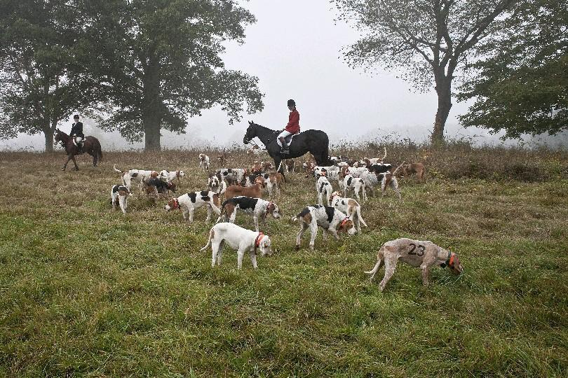 This fox hunt held in North Salem, in Westchester County, in October took place in upstate New York. Or it didn't. It all depends on your definition of 'upstate.' (Bryan Anselm/The New York Times)