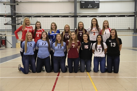 All-WNY girls volleyball 2017