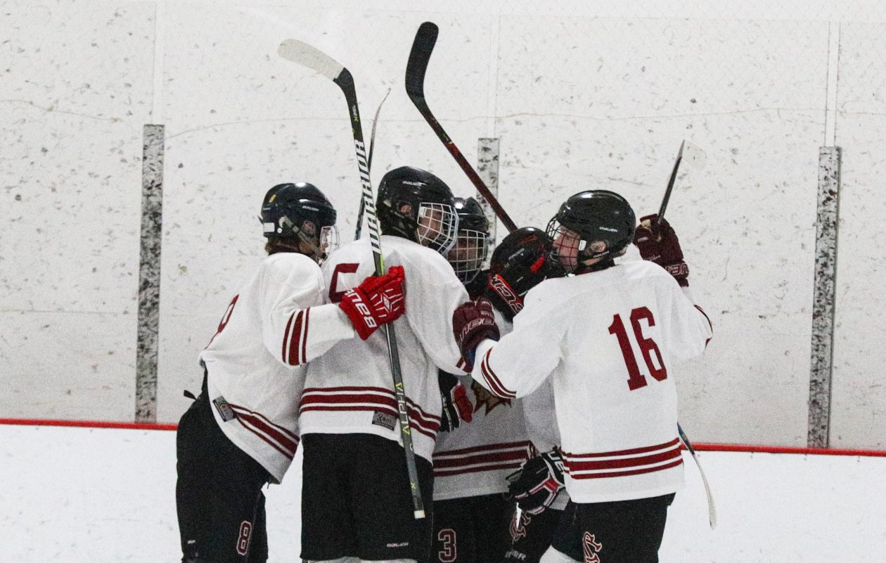 Starpoint's Blake Dewey celebrates a goal with his teammates against Williamsville South on Jan. 17, 2018.  (James P. McCoy / Buffalo News)