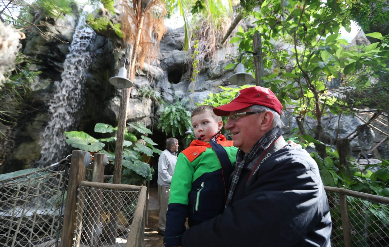 The Buffalo Zoo's M&T Bank Rainforest Falls exhibit offers a tropical feel during the cold winter month. (Sharon Cantillon/Buffalo News)