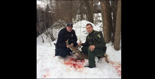 Authorities with a deer killed in Lackawanna. Pictured are Lackawanna Police Officer Anthony Catuzza, left, and Environmental Conservation Police Officer Timothy Machnica. (Photo courtesy of the State Department of Environmental Conservation)