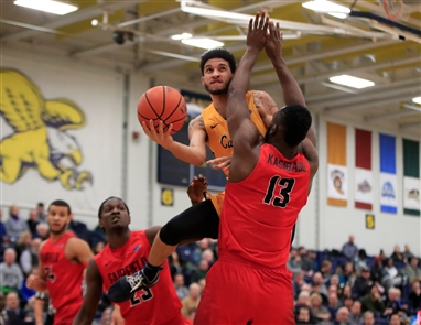 Canisius 81, Fairfield 63