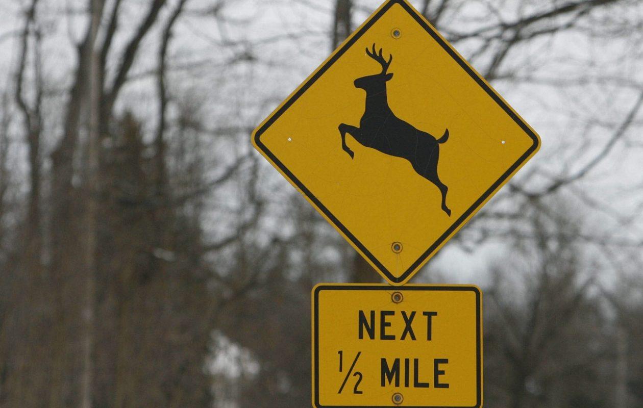 A road sign on Tonawanda Creek Road in Amherst.  (Derek Gee/News file photo)