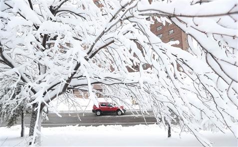 Heavy, wet snow blankets Buffalo Niagara