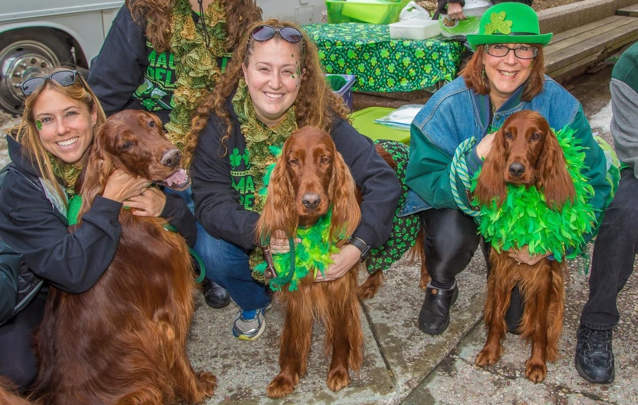 Smiling faces aren't exclusive to humans at the St. Patrick's Day Parade. (Don Nieman/Special to The News)