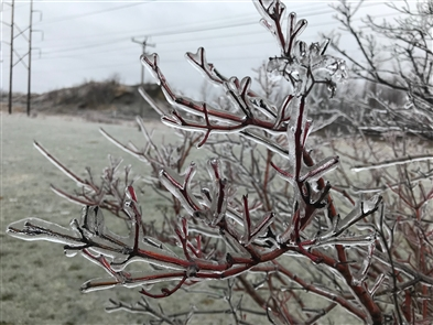 An ice storm warning was issued for Erie and Niagara County Saturday into Sunday.