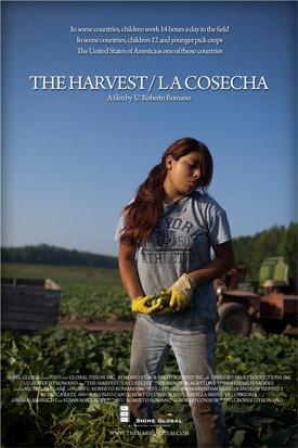 Theharvest