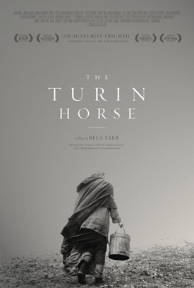 Turinhorse
