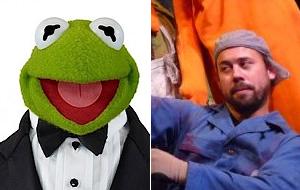 muppetsexperopinion.png