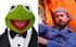 Muppetsexperopinion