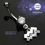 Body Jewelry Aquarius Zodiac CZ Navel Ring