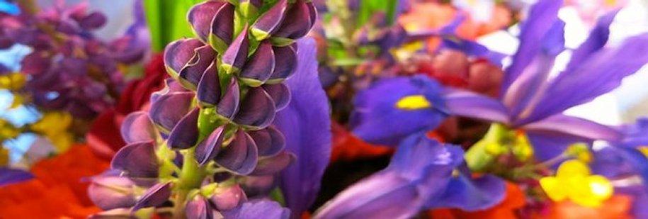 Moreflowers2